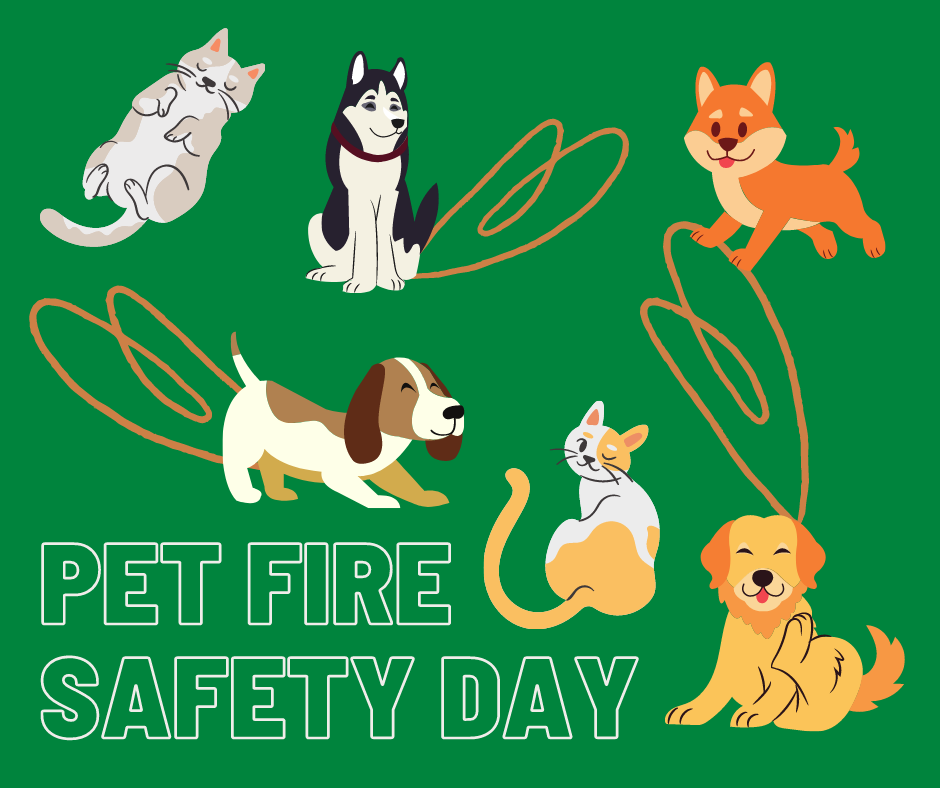 National Pet Fire Safety Day is held every July 15th